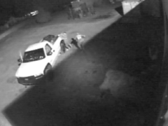 WCSO SEEKING INFORMATION FOLLOWING THEFT OF PAXTON BUSINESS
