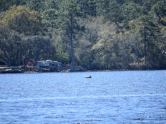 WALTON COUNTY MAN LIFE-FLIGHTED AFTER EXPLOSION  IN LAGRANGE BAYOU