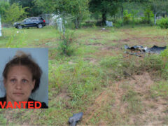 WOMAN WANTED ON FEDERAL WARRANTS FLEES; CRASHES VEHICLE AFTER DEPUTIES FIND GUN