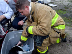 FIREFIGHTER SAVES FAMILY PET FROM HOUSE FIRE IN BRUCE