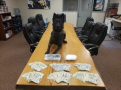 K9 Drago with U.S. Currency and drugs seized following traffic stop