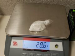 WCSO VICE NARCOTICS MAKES DRUG ARRESTS; TWO CHARGED WITH TRAFFICKING METH