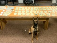 $11,000 IN CASH, 30 GRAMS OF METH FOUND FOLLOWING TRAFFIC STOP AND K9 ALERT
